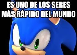 Enlace a Sonic, el más veloz, pero para hacer carreras va en coche