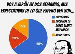 Enlace a Después de tanto anime, al ir a Japón espero ver...