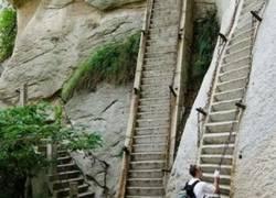 Enlace a Las escaleras de mi infancia