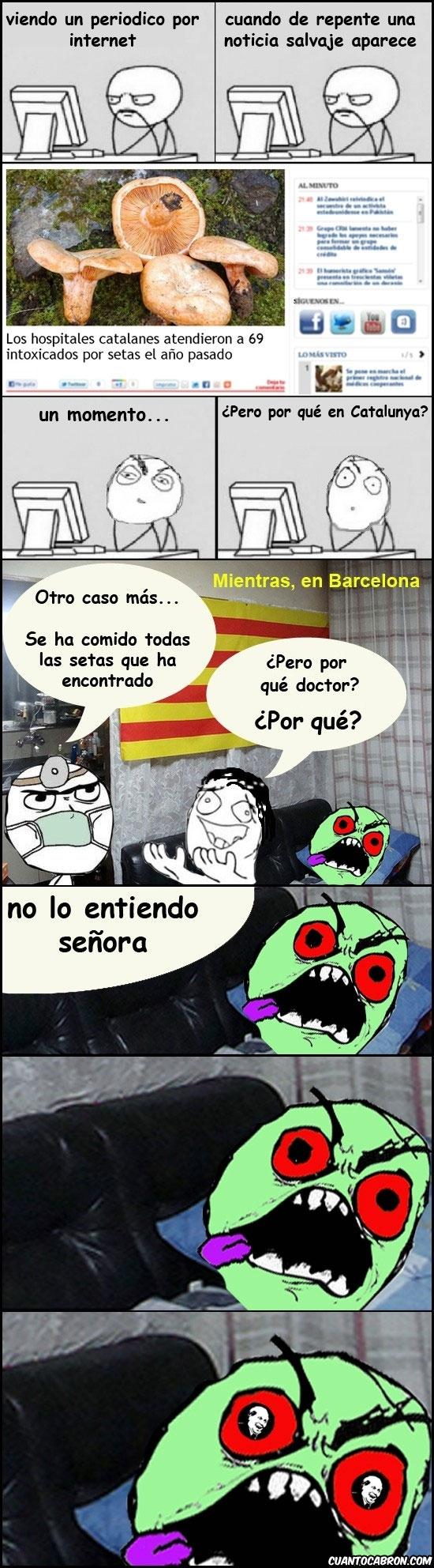 Its_free - Intoxicaciones por setas en Catalunya