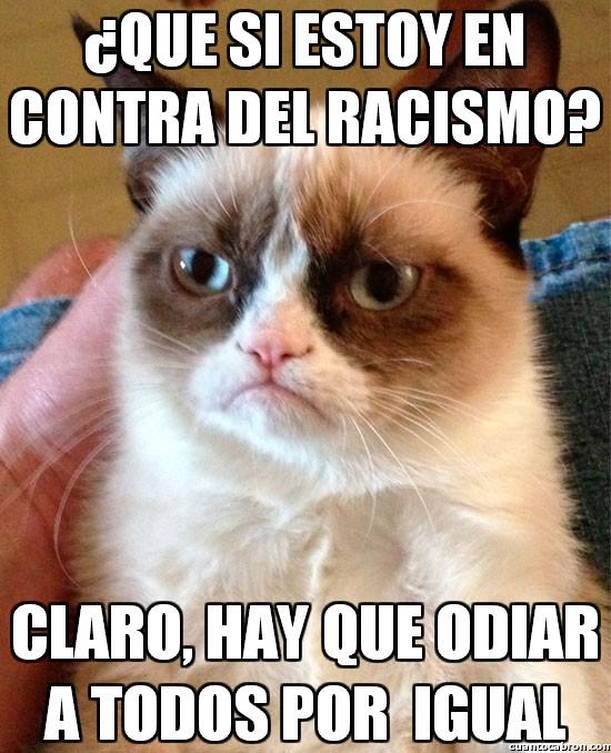 Grumpy_cat - Grumpy en contra del racismo