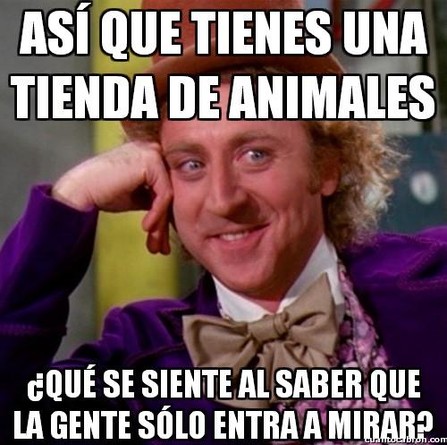 Wonka - La tienda de animales