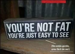 Enlace a No estás gordo, eres...