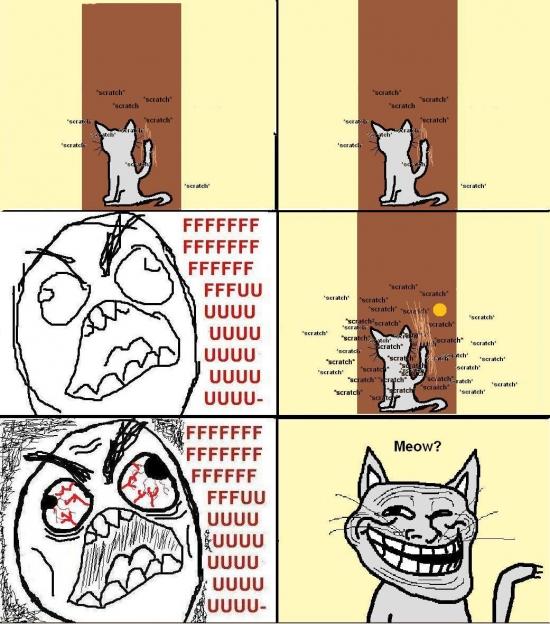 Ffffuuuuuuuuuu - Si hay un animal más troll que un gato, yo no lo he visto