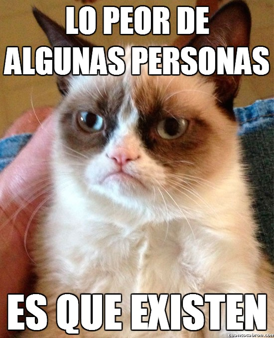 Grumpy_cat - Grumpy Cat filosofeando