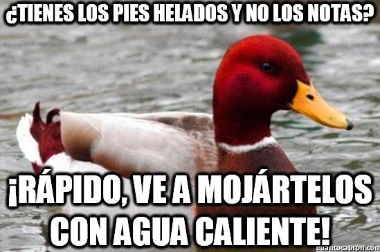 Pato_mal_consejero - No hay nada como una ducha caliente en invierno...