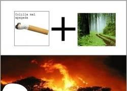 Enlace a La lógica del fuego