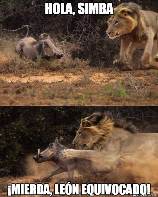 ataque,confusión,el león que no era,el rey león,pumba,timón