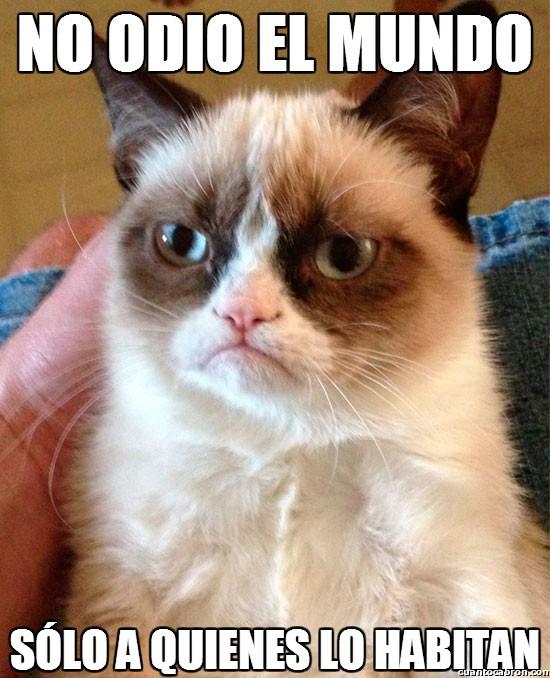 Grumpy_cat - Love everywhere