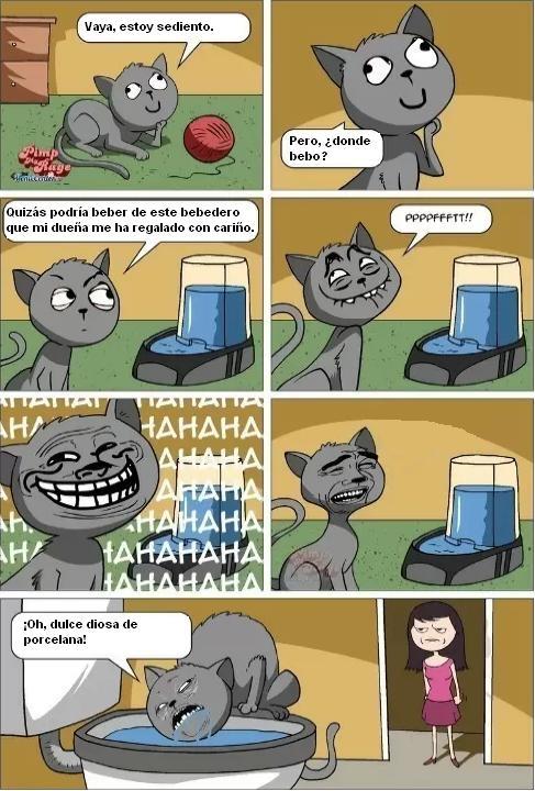 Me_gusta - Lógica gatuna
