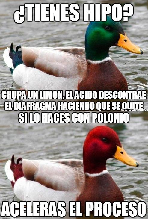 Pato_mal_consejero - Segunda opinión