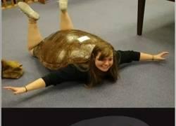 Enlace a Amor de tortuga ninja