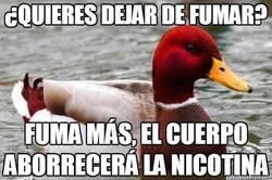 Enlace a Este pato es muy sabio