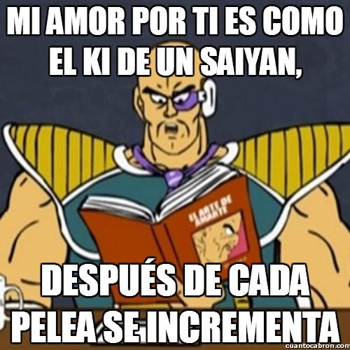 El_arte_de_amarte - Amor saiyan