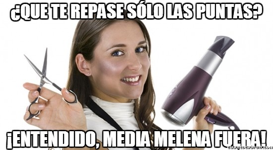 Meme_otros - La peluquera troll