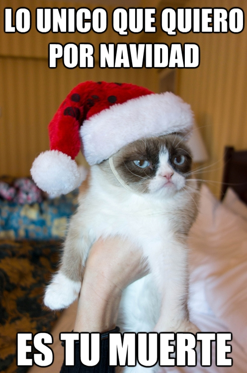 Grumpy_cat - ¡Son sus mejores deseos!