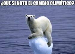 Enlace a Cosas del cambio climático