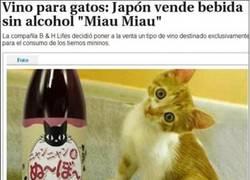 Enlace a Sólo podía pasar en Japón