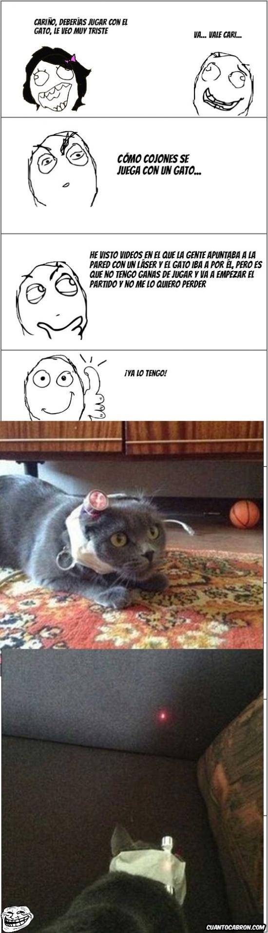 Trollface - Cómo jugar con un gato
