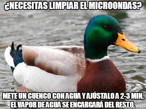 Pato_consejero - Limpiando el microondas