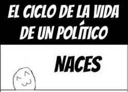 Enlace a El ciclo de la vida de los políticos