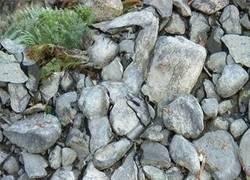 Enlace a Dónde tú ves sólo piedras, hay quién ve...