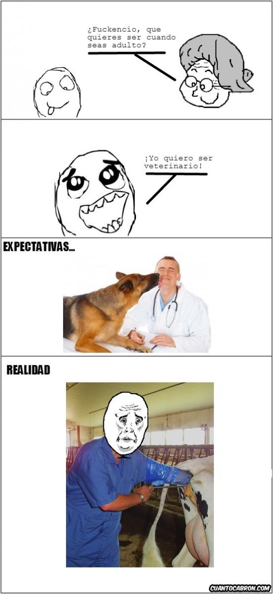 Okay - No todos los veterinarios tienen consultorio propio