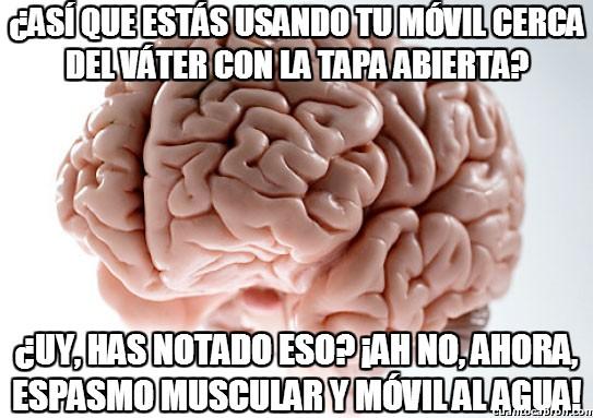 al agua,cerebro troll,espasmo muscular,móvil,tapa abierta,váter