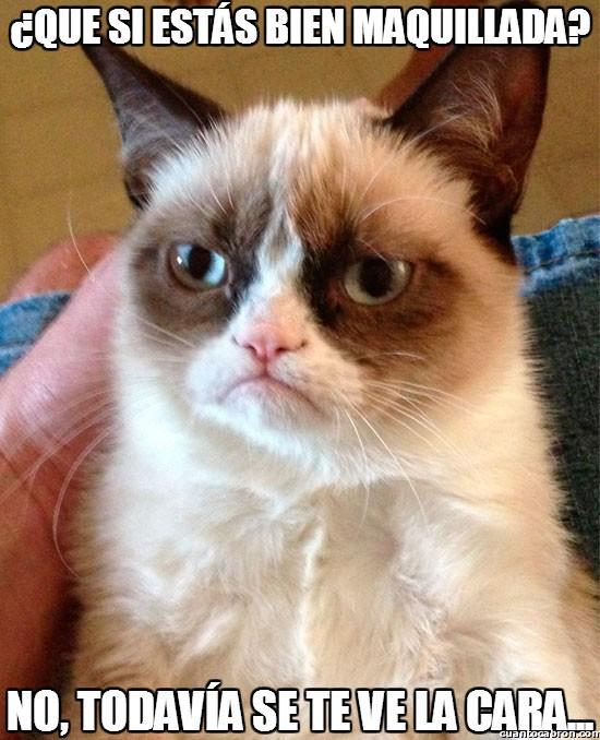 Grumpy_cat - Grumpy, el especialista en maquillaje