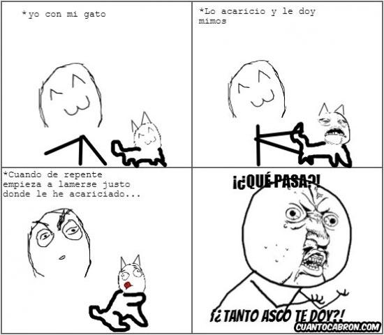 Y_u_no - Asco gatuno