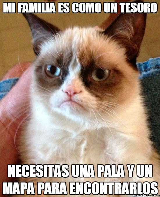 Grumpy_cat - La familia de Grumpy
