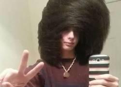 Enlace a No, en serio, ¿tanto cuesta llevar un peinado normal?