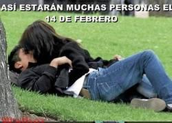Enlace a La cruel realidad de San Valentín