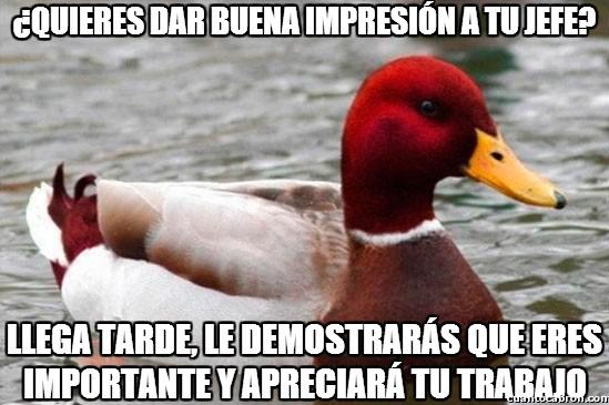 Pato_mal_consejero - Permanecer en el trabajo, el pato rojo sabe cómo