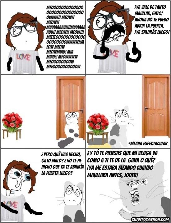 Y_u_no - Los gatos y sus constantes necesidades