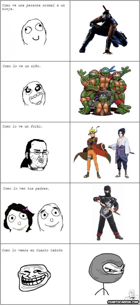Otros - Los ninjas desde varios puntos de vista