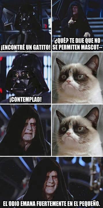 Grumpy_cat - Contemplad todos a Darth Grumpy