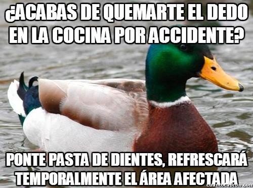 Pato_consejero - Un buen remedio contra las quemaduras