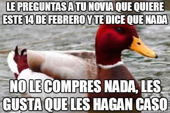Pato_mal_consejero - El mejor consejo para un enamorado