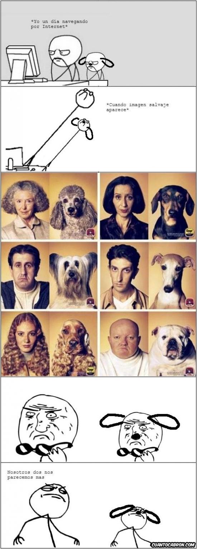 Computer_guy - [Tema de la semana] Parecidos entre perros y humanos