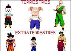 Enlace a Lógica de Dragon Ball