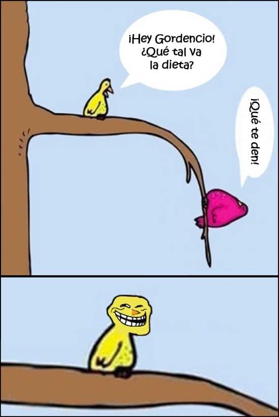 Trollface - Dieta aviar