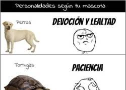 Enlace a [Tema de la semana] Personalidades según tu mascota
