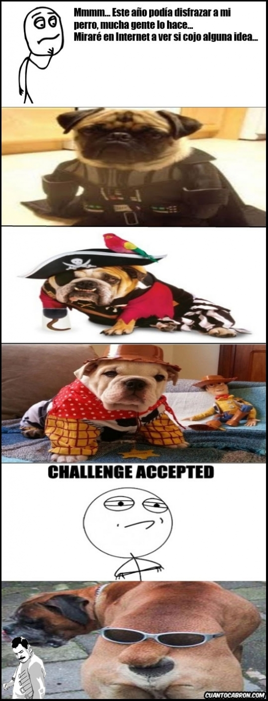 Challenge_accepted - [Tema de la semana] Disfraces para perro