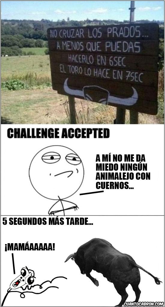 Challenge_accepted - Siempre está el valiente de turno...