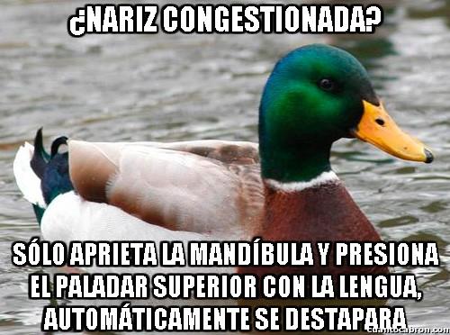 Pato_consejero - ¿Nariz tapada?