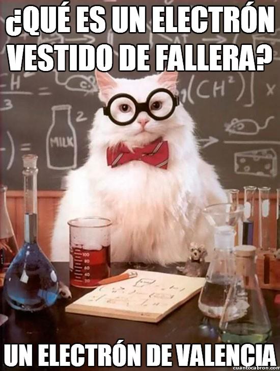 chistaco,fallera,gato químico,humor quimico,valencia