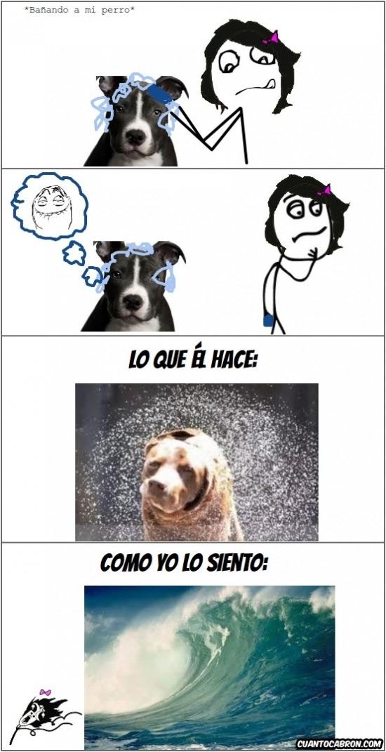 Omg_run - ¿El baño era para el perro o para mí?