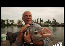 Enlace a El pez LOL