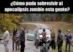 Enlace a Lógica de The Walking Dead
